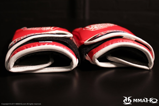 Combat Sports Gloves